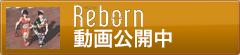 Ribbon動画